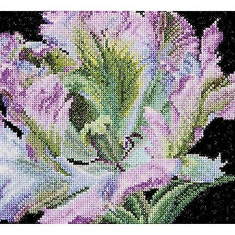 Tulip On Aida Counted Cross Stitch Kit-6