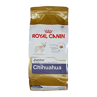 Royal Canin Chihuahua Junior, Chihuahua perro Junior cachorro alimentos 1,5 kg en seco