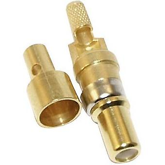 Coaxial conector (pin) Gold plated Conec 131J30019X 1 pc(s)