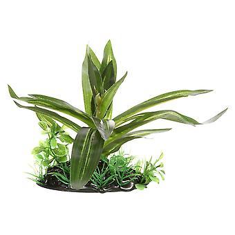 Fluval Giant Sagittaia Plant 10cm