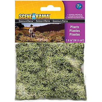Plants 2 Ounces Sp4185