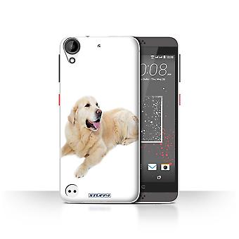 STUFF4 Case/Cover for HTC Desire 630/Labrador/Dog Breeds