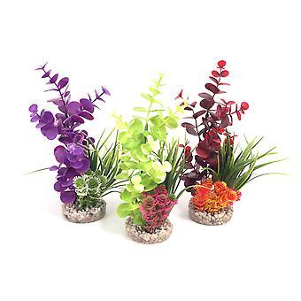 Couleur Sydeco plantes Bouquet couleur 22cm (Pack de 6)