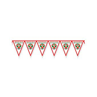 Mexico voetbal Bunting