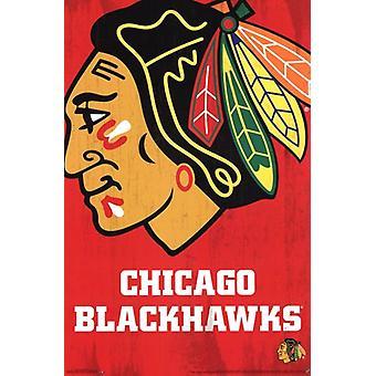 Chicago Blackhawks - Logo 2013 Poster Poster Print