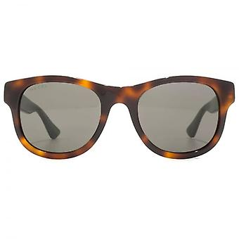 Gucci Urban Retro Sunglasses In Havana Green