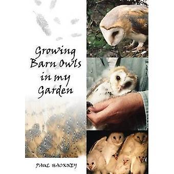 Growing Barn Owls in My Garden by Paul Hackney - 9781849950275 Book