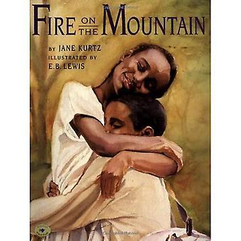 Feuer auf dem Berg (Aladdin Bilderbücher)
