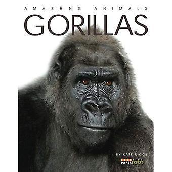 Gorillas (Amazing Animals (Creative Education Paperback))