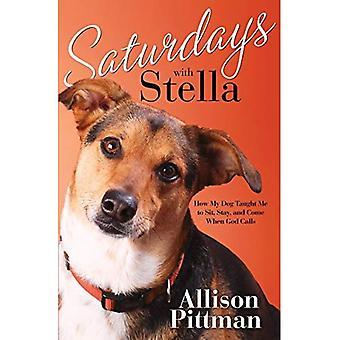 Zaterdag met Stella: hoe mijn hond leerde Me zitten, blijven en komen wanneer God noemt