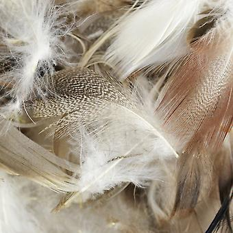 Domestic Goose Feathers 6 Grams Pkg Natural Md38197
