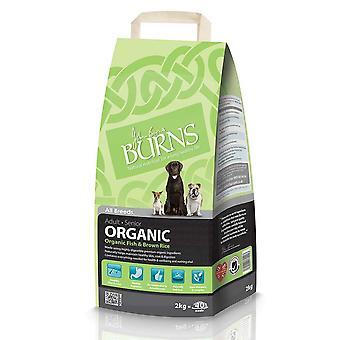Brænder organisk voksen & Senior komplet fisk & brune ris 8kg (4x2kg)
