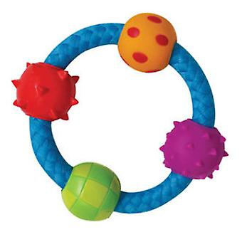 Petstages Multi Texture Chew Ring (Dogs , Toys & Sport , Chew Toys)