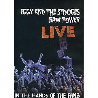 Iggy & the Stooges - Raw Power Live: In the Hands dell'importazione USA Fans [DVD]