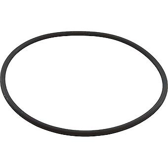 Speck pumpar 2921641223 165 x 6MM Casing O-Ring