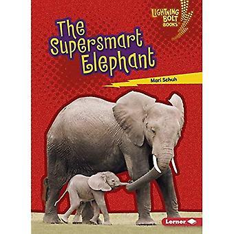 Superfin elefant (Lightning Bolt Books (TM)--perfekta djur)