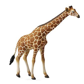 CollectA reticulated Giraffe