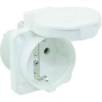Add-on socket IP44 White PCE 105-0ww