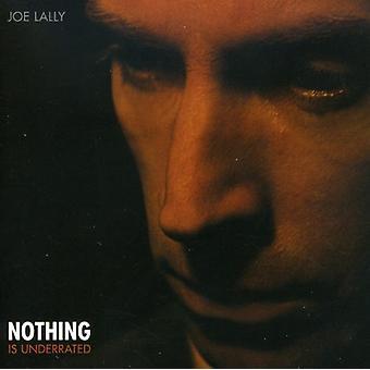 Joe Lally - intet er undervurderede [CD] USA import