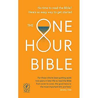 Jedną godzinę Biblii: Od Adama do Apokalipsy w sześćdziesiąt minut