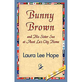 Bunny Brown and His Sister Sue at Aunt Lus City Home by Laura Lee Hope & Lee Hope