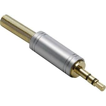 3.5 mm audio jack Plug, straight Number of pins: 3 Stereo Gold BKL Electronic 1103082 1 pc(s)