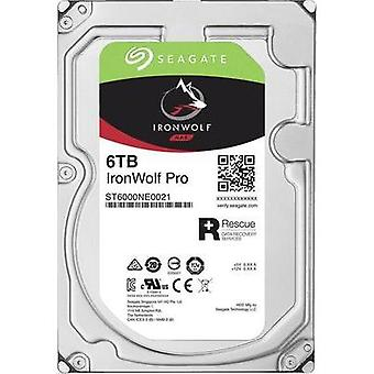 3.5 (8.9 cm) internal hard drive 6 TB Seagate IronWolf Pro Bulk