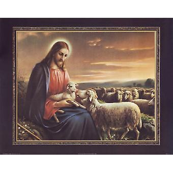 Jesus with Lamb Poster Print by Thomas L Cathey Collection (28 x 22)