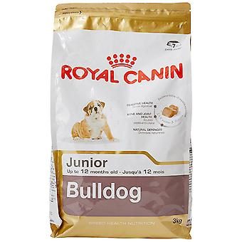 Royal Canin Hund Essen Bulldog Junior Trockenfutter
