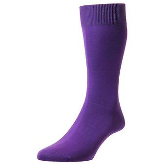 Pantherella Sackville Flat Knit Cotton Lisle Socks - Crocus Purple