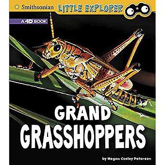 Grand Grasshoppers: A 4D Book (Little Entomologist 4D)