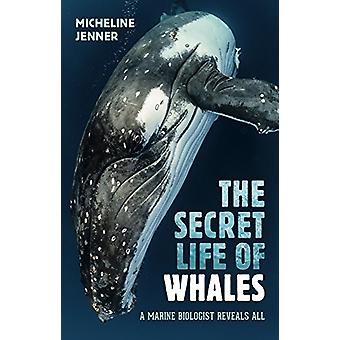 The Secret Life of Whales by Micheline Jenner - 9781742235547 Book