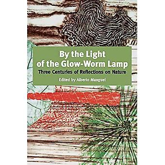 Dalla luce della lampada Bagliore-Verme: Tre secoli di riflessioni sulla natura