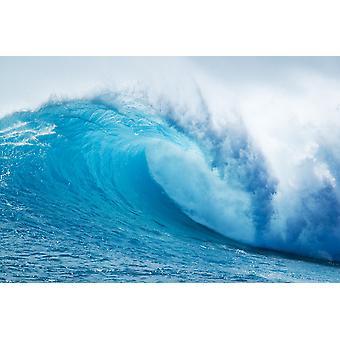 بوستيربرينت موجه المحيط الأزرق الجميل