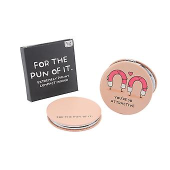 CGB Giftware For The Pun Of It Attractive Magnets Mirror