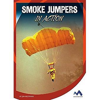 Smoke Jumpers in Action (Dangerous Jobs in Action)