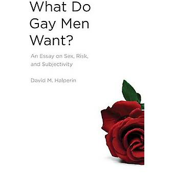 What Do Gay Men Want? - An Essay on Sex - Risk - and Subjectivity by D