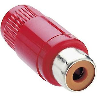RCA connector Socket, straight Number of pins: 2 Red Lumberg KTO 1 1 pc(s)