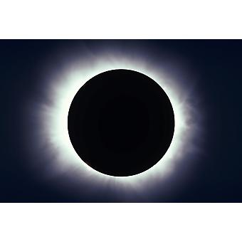February 26 1979 - Total solar eclipse taken near Carberry Manitoba Canada Poster Print