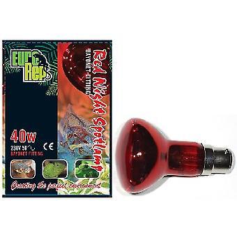 Red Night 40w Spotlamp Bayonet