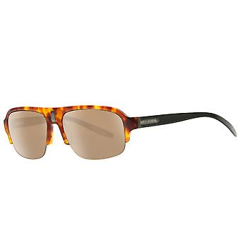 HARLEY DAVIDSON glasses mens Sunglasses brown in glasses box