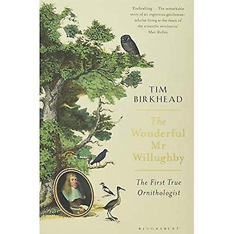 The Wonderful MR Willughby