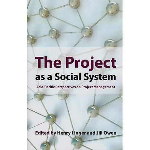 Project as a Social System