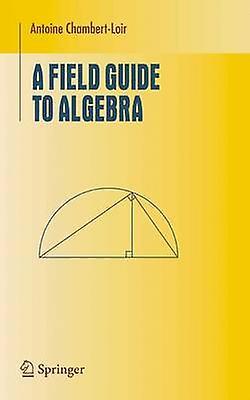 A Field Guide to Algebra by ChambertLoir & Antoine