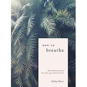 How to Breathe: 25 Breathwork Practices for Connection, Joy, and Resilience