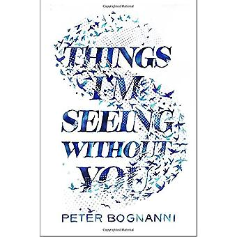 Things I'm Seeing Without You by Peter Bognanni - 9780735228047 Book