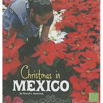 Christmas in Mexico by Cheryl L Enderlein - 9781620651384 Book