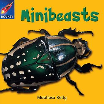 Minibeasts: Rosa läsare 2 (Rigby stjärnigt oberoende)