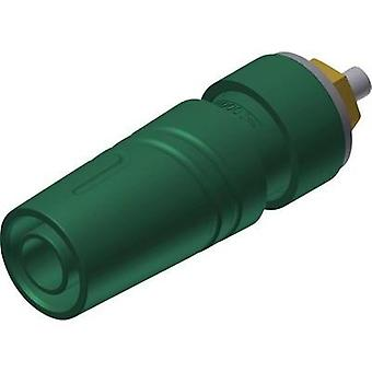 Safety jack socket Socket, vertical vertical Pin diameter: 4 mm Green SKS Hirschmann SAB 2640 LK Au 1 pc(s)