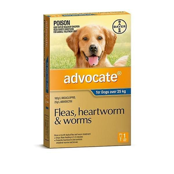 Advocate 1 Pack X Large Dogs over 25kg